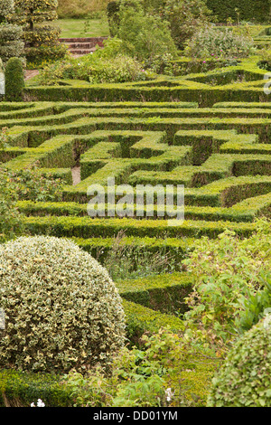 Hedge maze in the gardens of Hatfield house, located in Hertfordshire, England. - Stock Photo