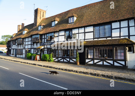 Black and white cat crossing road in front of medieval weavers' houses, Maydes Restaurant, Biddenden, Kent, England, - Stock Photo