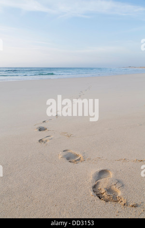 Footprints of feet on a beach walking away from the sea - Stock Photo