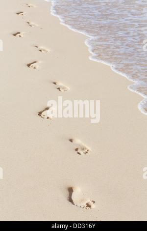 Footprints on sandy beach along the shore - Stock Photo