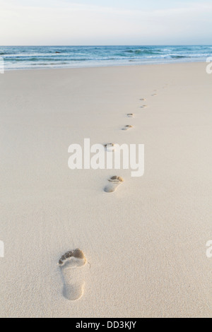 Footprints of person walking on beach sand - Stock Photo