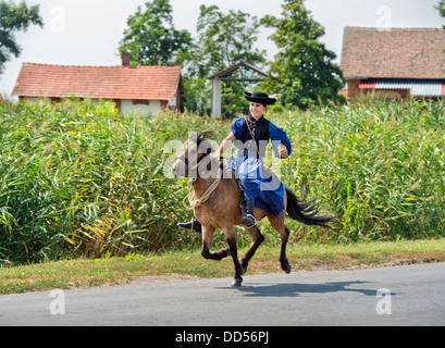 Traditional Hungarian 'Csikos' at a horse festival in the Hungarian town of Devavanya Aug 2013 - Stock Photo