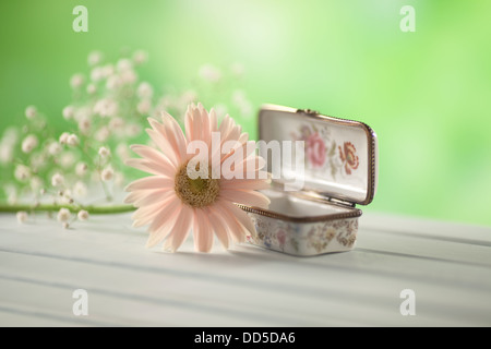 Jewel box and Gerbera flower - Stock Photo