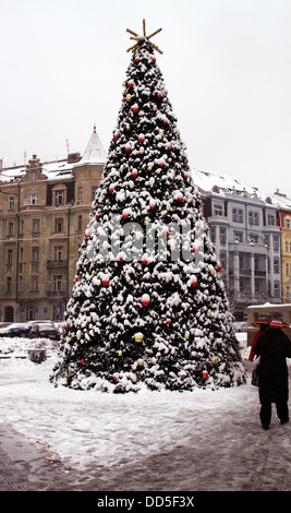 Outdoor Christmas Trees have been decorated with red, green and ...