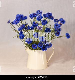 Jug of Cornflowers - Stock Photo
