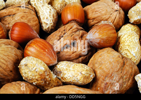Mixed nuts in their shells (Monkey nuts, Walnuts and Hazelnuts). - Stock Photo