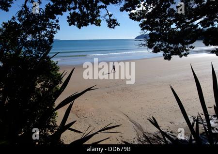 Old man walks on empty beach. - Stock Photo
