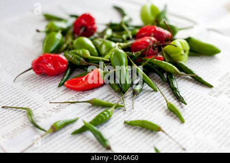 Pile of mixed chilli peppers, on a newspaper background. Side view. Bird's eye, Scotch Bonets, Jalapeños. - Stock Photo