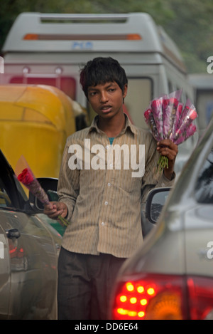 A young boy selling flowers to motorists caught in traffic in Delhi, India - Stock Photo