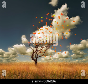 Autumn Landscape With Lonely Tree And Colorful Leaves - Stock Photo