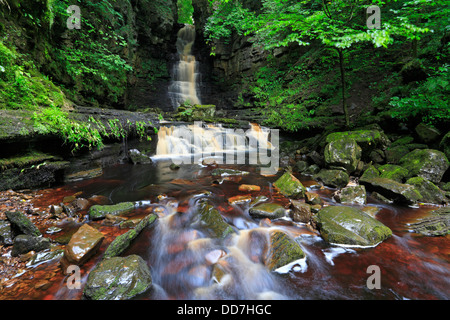 Mill Gill Force near Askrigg in Wensleydale, North Yorkshire, Yorkshire Dales National Park, England, UK. - Stock Photo
