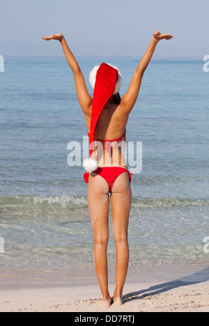 winter holiday vacation at Christmas in the sun - Stock Photo