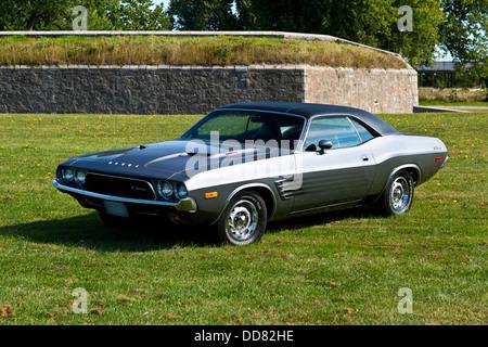1973 Dodge Challenger on grass - Stock Photo