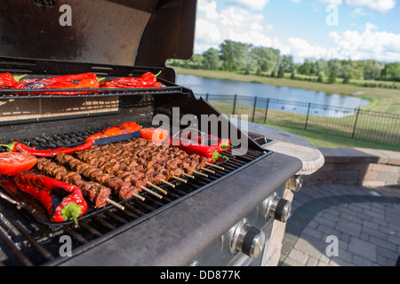 Shish Kebabs and Chillies being cooked on the barbecue - Stock Photo