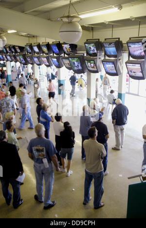 Thoroughbred horse racing at Tampa Bay Downs in Tampa. Florida. USA - Stock Photo