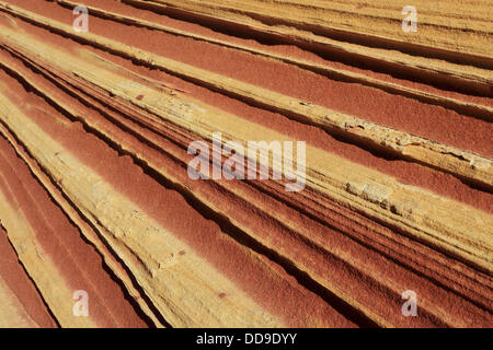 Coyote Buttes North, fragil sandstone formed by wind and water, Paria Wilderness Area, Arizona, USA - Stock Photo