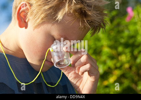 Child, loupe, magnifier, Junge, Kind beobachtet Insekt in Becherlupenglas, Becherlupe, Lupe - Stock Photo