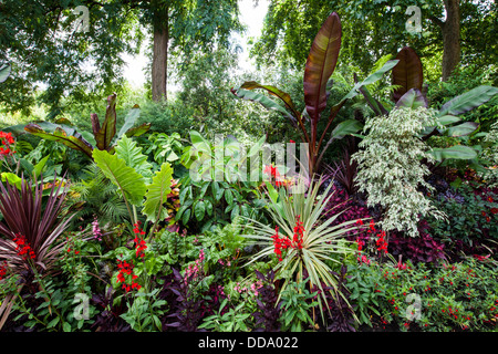 The Tropical Gardens of St James's Park, London - Stock Photo