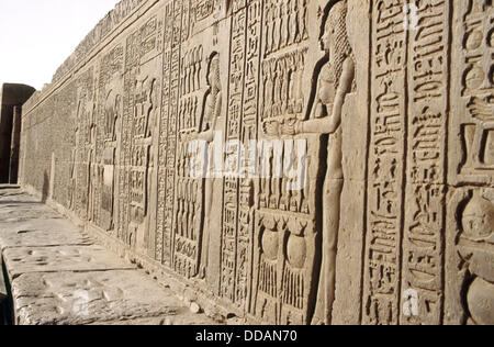 Reliefs of Sobek. Crocodile temple in Kom Ombo. Egypt - Stock Photo