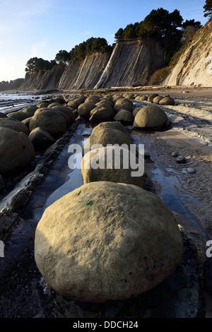 Round egg shaped boulders at Bowling Ball Beach Schooner Gulch Point Arena California USA pacific coast ocean