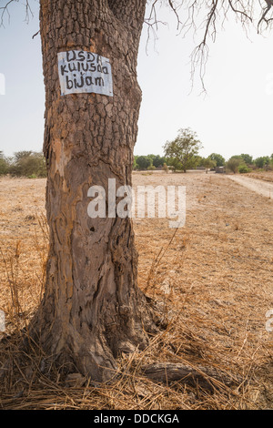 Sign on Tree Indicates that the Village, Bijam, near Kaolack, Senegal, is participating in a Millet Development - Stock Photo