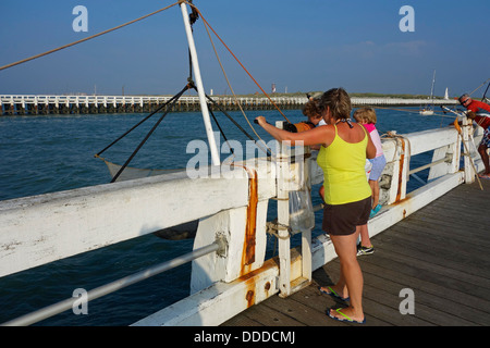 Pier with fishing nets along coast stock photo royalty for Pier fishing net