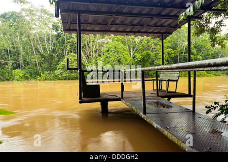 Dock for tourist canoes on an Amazonian river in Ecuador - Stock Photo