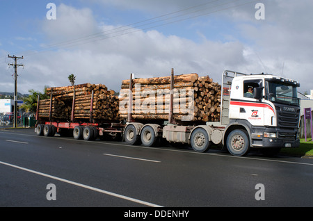 Stacked wooden logs, tree trunks on a logging truck in Kaitaia Northland New Zealand NZ NZL - Stock Photo