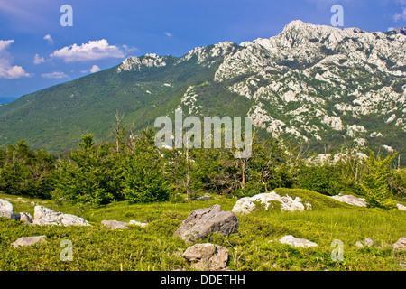 Crnopac peak nature of Velebit mountain, Dalmatia, Croatia - Stock Photo