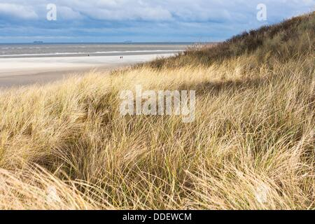 Sand dune and marram grass on the east frisian island of Spiekeroog, Lower Saxony, Germany, Europe - Stock Photo
