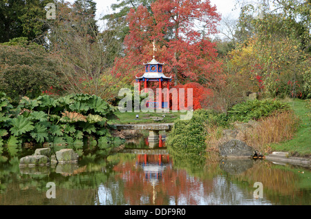 Autumn Colors in an English Park with Japanese style Gazebo and Pond - Stock Photo