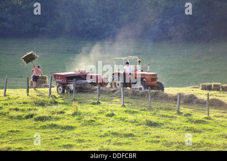 Hay baling, tractor collecting and making hay on a farm in France - Stock Photo