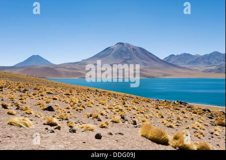 Laguna Miscanti and volcano Miniques, Atacama salt flat, Atacama Desert, Chile - Stock Photo