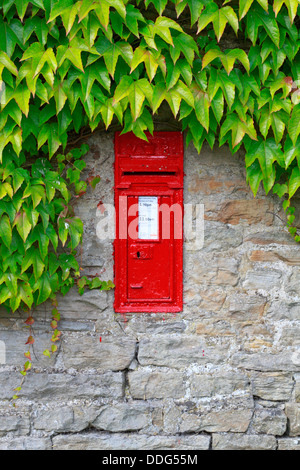 A VR Victorian wall post box in an ivy covered stone wall in Thwaite, North Yorkshire, Yorkshire Dales National - Stock Photo