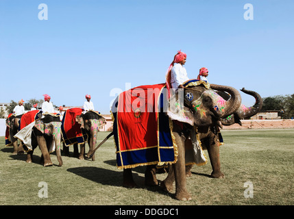 Royal elephant procession during Elephant Festival, Jaipur, Rajasthan, India - Stock Photo