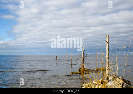 Barb wire into the water - Stock Photo