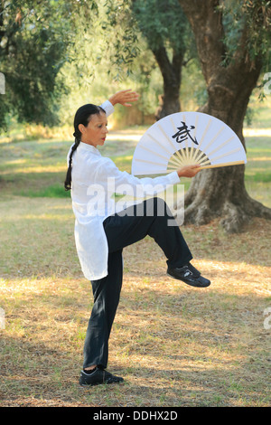 Tai Chi performed with a fan, demonstration in an olive grove