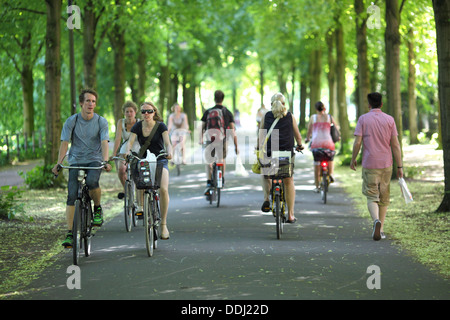 Cyclists on the Promenade in Münster, North Rhine-Westphalia, Germany. - Stock Photo
