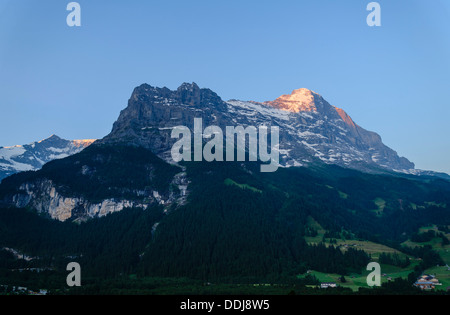 View of the Eiger from Grindelwald, Switzerland in early morning light. The Fiescherhorn is also seen further back - Stock Photo