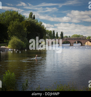 Man rowing on the river Severn Worcester Worcestershire England - Stock Photo
