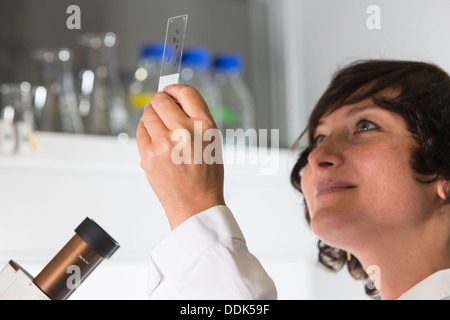 Portrait of female scientist at the laboratory with microscope - Stock Photo