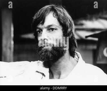Richard Chamberlain (1935- ), American actor, 1981. - Stock Photo