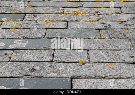 Cracked Roof Tile Tiles Roofing Roofs Broken Damaged