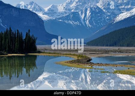 Mt  Kitchener reflected in the Beauty Creek pool near the Sunwapta River, Jasper NP, Alberta, Canada - Stock Photo