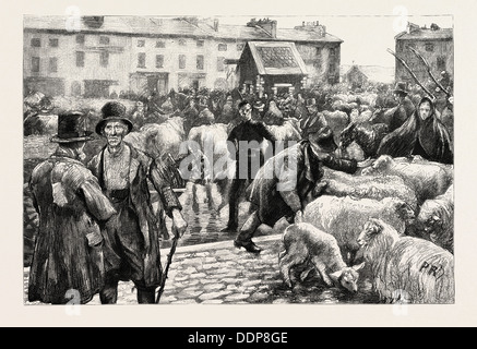 A CATTLE FAIR, COUNTY GALWAY IRELAND, 1888 engraving - Stock Photo
