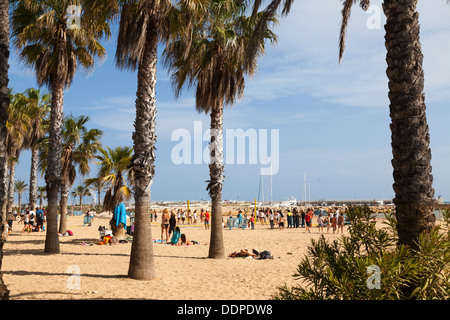 people under the palm trees on the beach at Salou - Stock Photo
