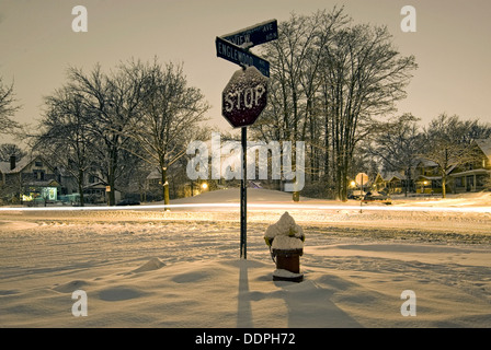 Stop sign, fire hydrant and street covered in snow, early morning. St Paul, Minnesota - Stock Photo