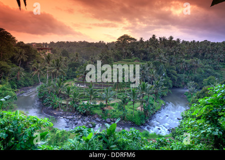 Indonesia, Bali, Ubud, Sayan Valley and Ayung River - Stock Photo