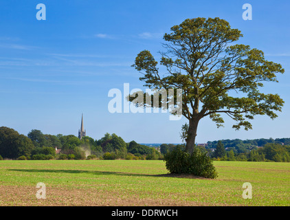 View of Louth church spire in the distance Lincolnshire wolds England UK GB EU Europe - Stock Photo