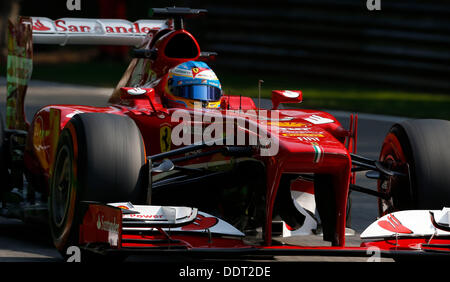 Monza, Italy. 06th Sep, 2013. Motorsports: FIA Formula One World Championship 2013, Grand Prix of Italy, #3 Fernando - Stock Photo